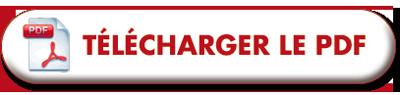 bouton telecharger pdf